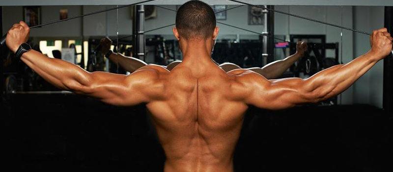 vježbe za leđa